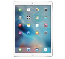 "Slika izdelka: Tablica APPLE iPad Pro 12.9"" WiFi 512GB siv"